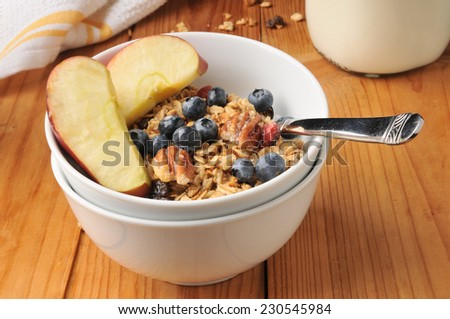 A bowl of organic granola with pecans, raisins, blueberries and sliced apple - stock photo