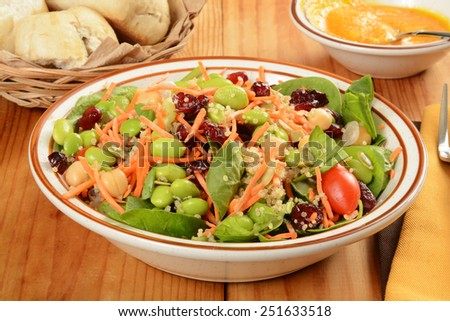 A bowl of salad made loaded with cranberries, carrots, edamame, pumpkin seeds and other superfoods