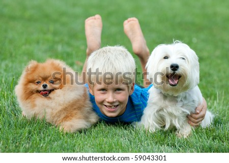 A boy and his pets are lying on the green grass