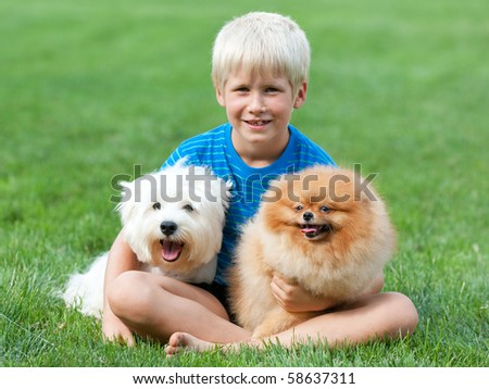 A boy and his pets are sitting on the green summer meadow