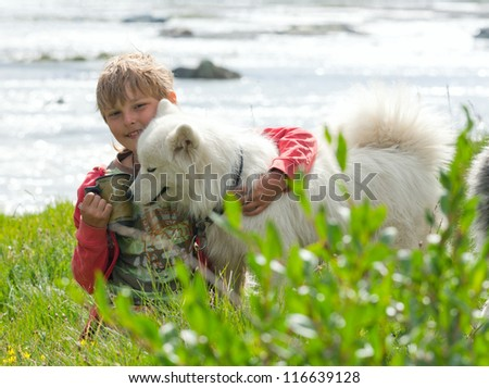 A boy plays with a dog breed husky - stock photo