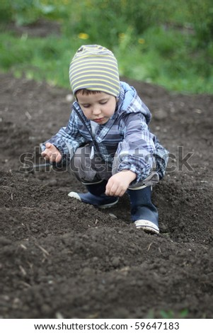 A boy sowing seeds in soil - stock photo