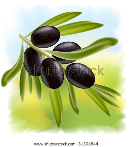 A branch of black olives on fullcolor background. Raster version.