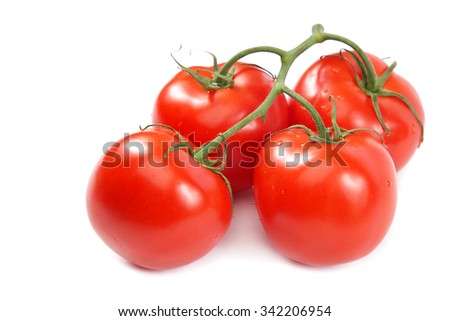 A branch of fresh tomatoes isolated on white background. - stock photo