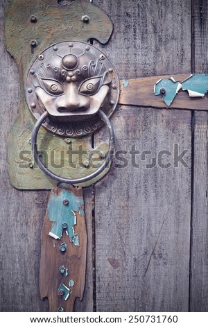 A brass lionhead knocker on an old gate - stock photo