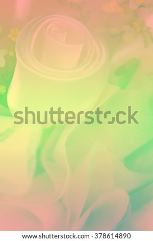 A breathtaking rose displays all its beauty as the sunlight gently strikes its petals. Beautiful for wedding invitations, gardening magazines, and many other great ideas and concepts, soft focus - stock photo