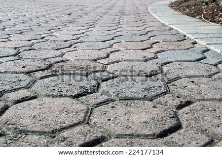 A brick driveway in bonita springs florida composed of octagon and square shaped bricks stretches off into the distance bordered with white bricks. - stock photo