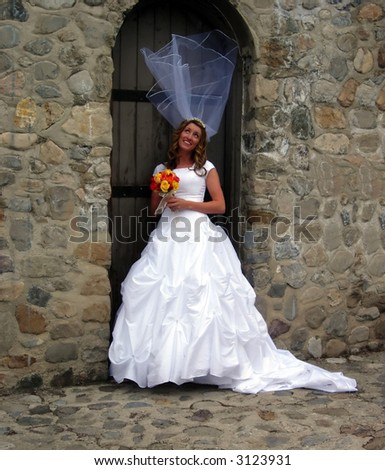A bride's veil blowing in the wind - stock photo