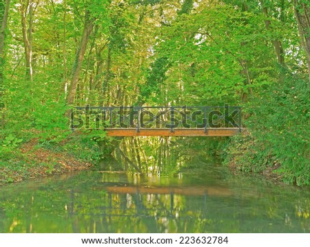 A bridge in a forest.  - stock photo