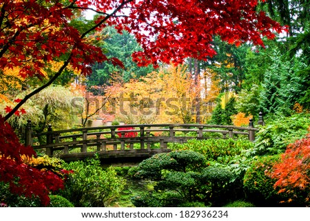 A bridge in a Japanese garden during Fall season - stock photo