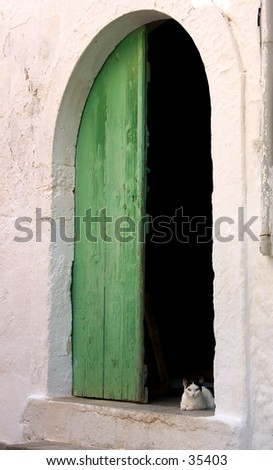 A bright-eyed kitten in the doorway of a traditional Greek village house. - stock photo