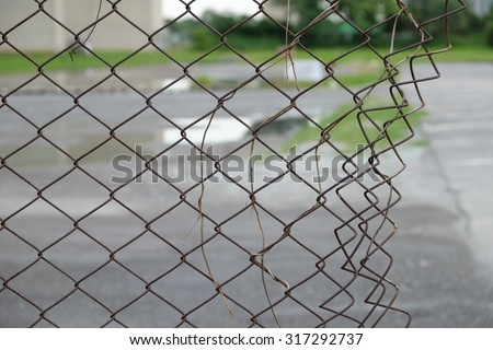 a broken fence with a death vine