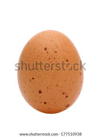 A brown egg isolated on white background - stock photo