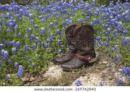 A brown leather pair of cowboy boots with spurs sits on rock in a field of Texas bluebonnets - stock photo