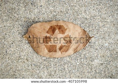 A browning autumn leave with imprint of a recycle symbol for the concept of environmental sustainability. - stock photo
