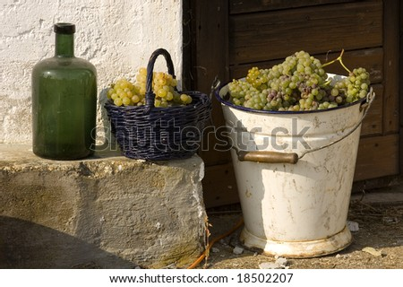 A bucket, a green bottle and grapes in an old white basket