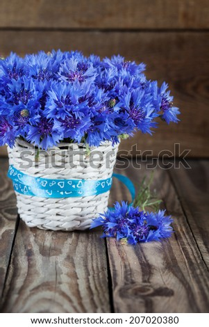 A bunch of beautiful summer flower of Cornflower in the white bucket with blue ribbon. Concept of romantic. - stock photo