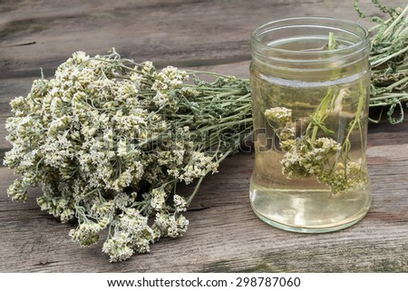 A bunch of dried yarrow and decoction in the glass jar for herbal medicine on an old wooden table - stock photo