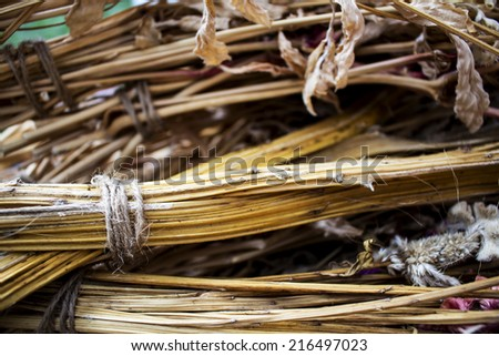 A bunch of dry branch flower with rope background.