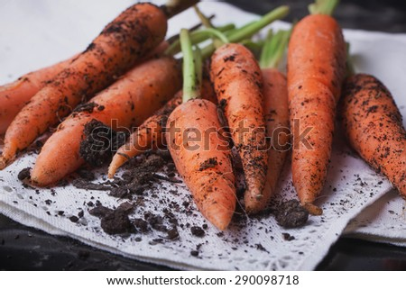 A bunch of freshly diggen organic carrots in the vintage white napkin, black background - stock photo