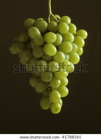 A bunch of green grapes hanging against a dark background