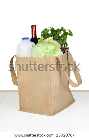 A bunch of groceries in a recyclable shopping bag.