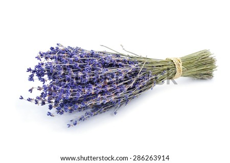 a bunch of lavender flowers tied with string on a white background