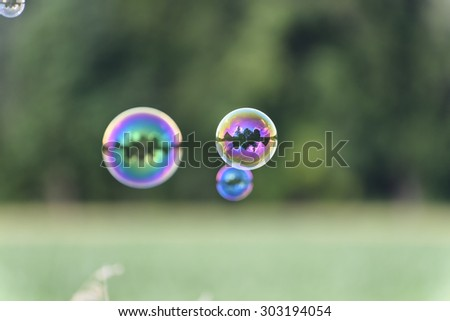A bunch of magical shining soap bubbles flying over a corn field in front of a wood. Some bubbles are mysteriously reflecting a single house with trees like an island. - stock photo
