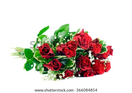 A bunch of Red Roses and green leaves, together with gypsophila tied in a bouquet against white background