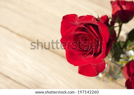 A bunch of red roses in a vase. - stock photo