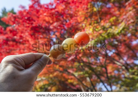a bunch of rice cake /mochi in autumn background