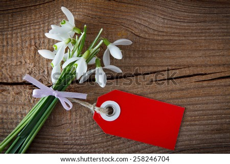 a bunch of snowdrops and a price tag on wooden board - stock photo