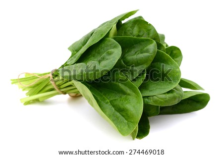a bundle of fresh spinach on white background  - stock photo
