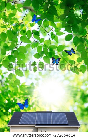 A butterfly and light of the sun panel - stock photo