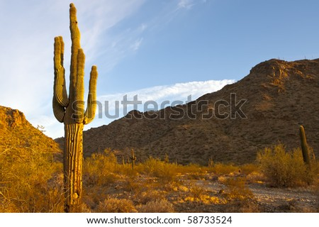 Western landscape Stock Photos Images & Pictures | Shutterstock HD Wide Wallpaper for Widescreen