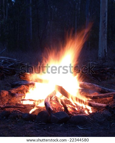 a campfire blazes away in the night - stock photo
