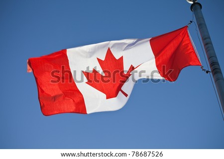 A canadian flag in the sunshine - stock photo