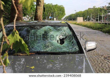 A car destroyed by a fallen tree trunk due to heavy winds - stock photo