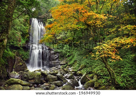 A cascading waterfall over a rocky cliff in a lush forest. - stock photo