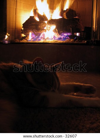 A cat asleep in front of a warm fireplace.