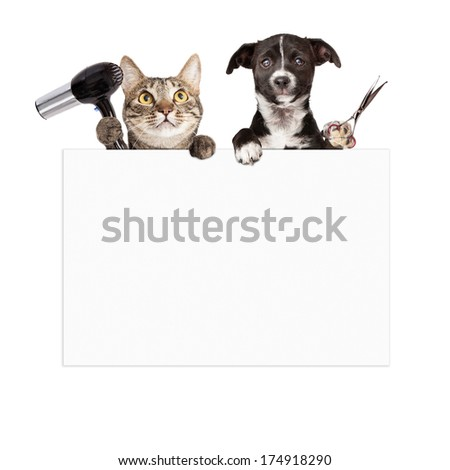 A cat holding a hair dryer and a dog holding cutting shears while hanging over a blank sign that is ready for you to enter your grooming service message on - stock photo
