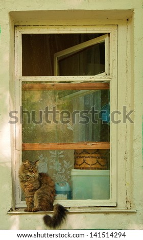 A cat that sits on a window in a village house