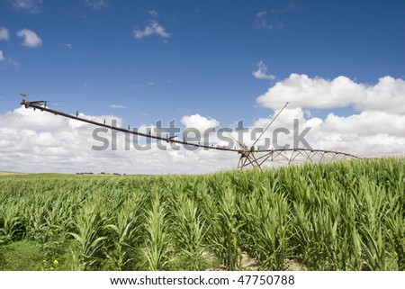 A center modern pivot irrigation system in a green cultivated land farm field - stock photo