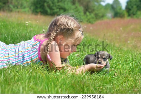 A child on a walk with a little puppy - stock photo