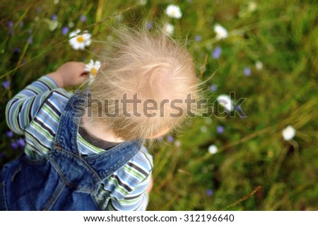 A child with ruffled hair walking in the field picking flowers - stock photo