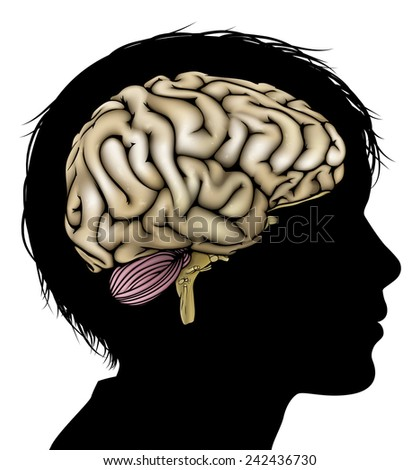 A childs head in silhouette with brain. Concept for child mental, psychological development, brain development, learning and education or other medical theme - stock photo
