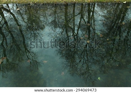 A clear reflection of trees in the river.It is great of Arts natural