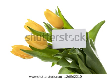 A close-up image of yellow tulips with an empty white card isolated