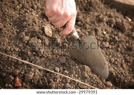A close-up of a hand with a trowel cutting into the earth - stock photo