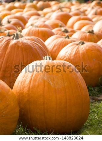 A close up of a round pumpkin